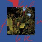 Release: Massimiliano Pagliara – Feel Live